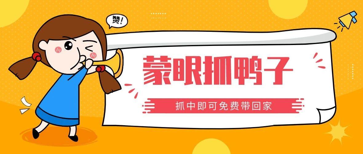 龙创·滨江公园城丨全民抓鸭嗨翻天 乐享缤纷周末