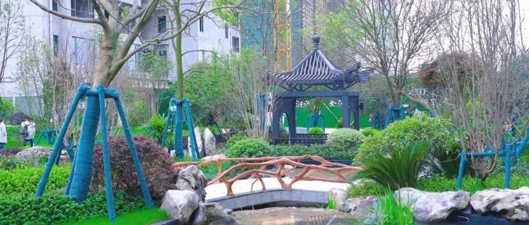 凤凰台丨4万方苏式园林景观,一步一景,目之所及皆美好!